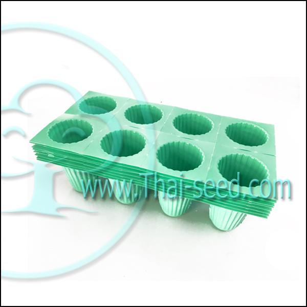 ถ้วยปลูกเขียว ไฮโดโปรนิกส์