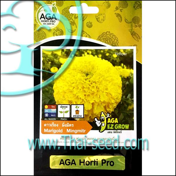 ดาวเรือง มิ่งมิตร AGA Horti Pro