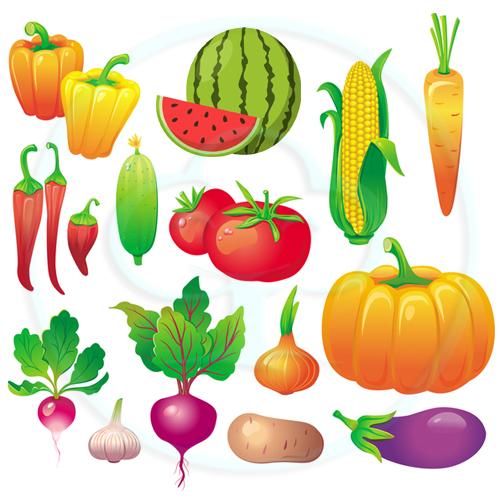 กลุ่มเมล็ดพันธุ์-กินผล/กินลูก