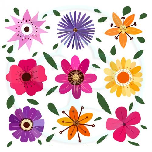 กลุ่มเมล็ดพันธุ์-ดอกไม้ทั้งหมด